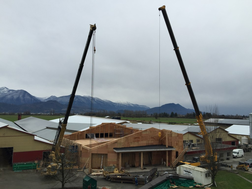 Cranes to lift Beams into Place